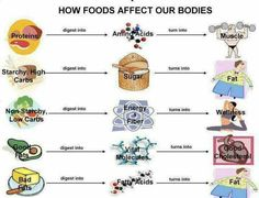 How food affect our bodies..