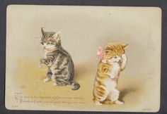 C9412 Victorian S&N Xmas Card: Cats, Helena Maguire