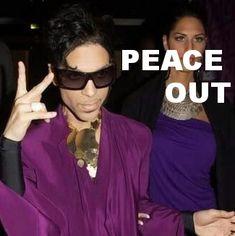 Prince - http://sunnydawnjohnston.com/blog/prince/