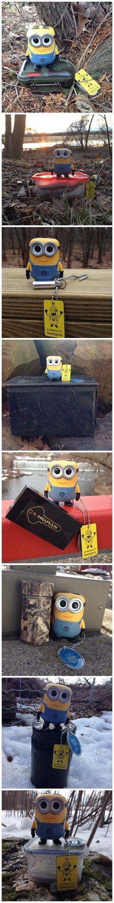 A Minion goes geocaching!  With eyes that size, maybe they're suited for spotting geocaches.  (pics by geominionmom on Instgram stitched together by I.B. Geocaching and pinned to Geocaching Images - pinterest.com/islandbuttons/geocaching-images/)  #IBGCp