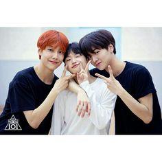 Produce X memes 🤪👍🏻 - Produce Stand, Produce 101, Yohan Kim, Le Net, Korea Boy, Wattpad, Korean Boy Bands, Kpop Boy, Boyfriend Material