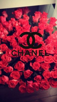 Chanel-logo | Tumblr Rose Gold Wallpaper, Cute Wallpaper Backgrounds, Pretty Wallpapers, Blue Aesthetic Pastel, Red Aesthetic, Aesthetic Vintage, Triste Disney, Chanel Wallpapers, Vintage Cartoons