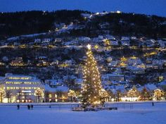 Christmas in Norway- Learn about Christmas Tradition, Crafts, and Food from Norway