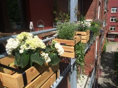 Window boxes Ikeahack - All About Balcony Balcony Railing Planters, Green Apartment, Balcony Furniture, Decorative Planters, Balcony Design, Diy Garden Projects, Window Boxes, Pallet, Backyard