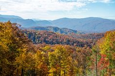 Fall in the Smoky Mountains - Amazing time to visit!