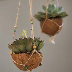 Diy Crafts For Home Decor, Diy Crafts Hacks, Diy Crafts For Gifts, Coconut Shell Crafts, Decoration Plante, Diy Planters, Garden Crafts, Hanging Plants, Plant Decor
