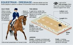 London 2012 Olympics: equestrian guide - Telegraph