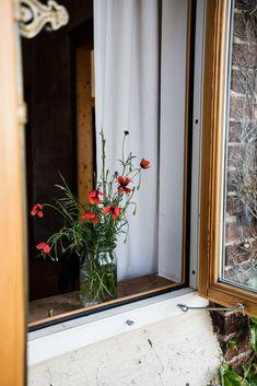 Mohn Gardening, Oversized Mirror, Flowers, Plants, Blog, Home Decor, Potting Soil, Fruit Garden, Lawn And Garden
