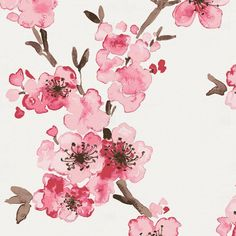 Pink Cherry Blossom Fabric by Carousel Designs. This floral antique white fabric is perfect for boys or girls. It is a medium weight fabric made of Cotton material. Cherry Blossom Watercolor, Cherry Blossom Art, Watercolor Flowers, Watercolor Paintings, Chinese Cherry Blossom, Watercolour, Cherry Blossom Wallpaper, Watercolor Tattoos, Pink Blossom