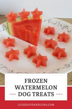 Easy to make frozen watermelon dog treas uses only ingredients. Frozen Watermelon, Frozen Fruit, Small Ice Cube Trays, Easy Treats To Make, Dog Ice Cream, Frozen Dog Treats, Frozen Pumpkin, Pumpkin Dog Treats, Dog Treat Recipes