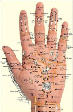 Reflexology Points, Hand Reflexology, Acupressure Points Chart, Massage For Men, Neck Massage, Foot Massage, Acupressure Treatment, Acupressure Therapy, Calendula Benefits