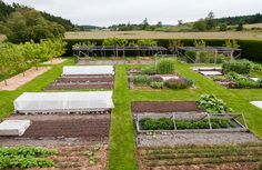 Wow...now there's a huge kitchen garden.  I might use the idea to create a rectangular bed around my fruit trees.  We don't mow around them often, but it'd be way easier to keep them mulched and mow if they were in larger beds.