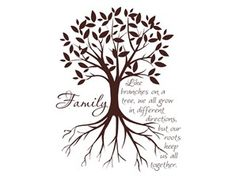 """Love this decal and quote - """"Like branches on a tree we all grow in different directions but our roots keep us all together."""""""
