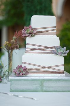 cake by Caked Las Vegas, succulent wedding cake, Ravella Lake Las Vegas wedding, white and brown wedding cake