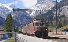 Luftwaffe, Swiss Railways, Locomotive, Train, Switzerland, Zug, Locs, Strollers