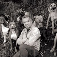 """9 Lessons from """"The Dog Whisperer"""" - Cesar Milan  I put this under the Kiddos board...wow , this so pertains to Children ..wish I had know this while I was raising kids..A Must READ"""