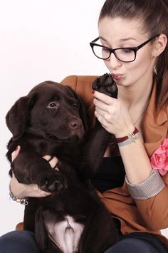 dog and girl, love, friends, chocolate labrador