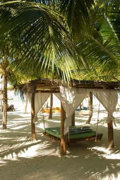 The perfect place for winter holidays Holbox Island, Mexico Places To Travel, Places To Visit, Mexico Travel, Island Life, Beach Resorts, Cancun Resorts, Travel Inspiration, Beautiful Places, Surfing