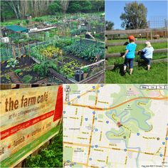 Urban Growth: Melbournes Community Gardens - The Photo List
