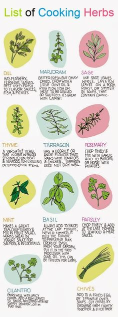 List of Cooking Herbs