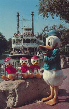 Disneyland postcard featuring Donald Duck with Huey, Dewey & Louie as the Mark Twain Riverboat churns past Disney Parks, Disney Pixar, Walt Disney, Disney Characters, Retro Disney, Disney Love, Disney Stuff, Daisy Duck, Looney Tunes