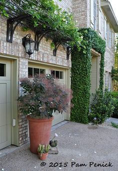 West Texas meets the Big Easy in the courtyard garden of Curt Arnette | Digging