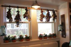 Itsy Bits and Pieces: The Bachman's Fall Ideas House 2011 Dining Room Windows, House Windows, Old Garden Gates, French Provincial Kitchen, Crib Spring, Vintage Shutters, Hanging Herbs, Window Coverings, Cottage Chic