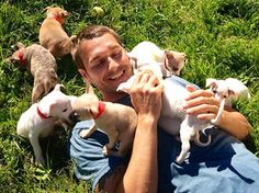 He started as a wild animal trainer for the movies, now Brandon McMillan is saving shelter dogs from their tragic fates, and showing America there is no such thing as 'untrainable' dog on CBS' 'Lucky Dog'