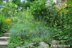 Restoring The Landscape With Native Plants