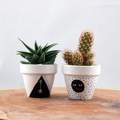 el-boyama-saksi-sukulent-ve-kaktus