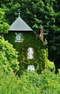 ivy covered beautiful dream house old fashioned