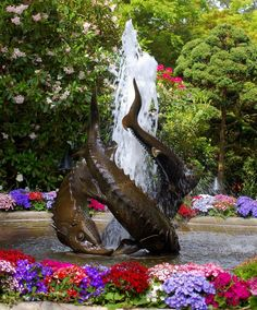 water fountain -- Curated by : Blue Valley Aquatic Landscapes 300 sigalet road Lumby BC v0e 2g6 250-547-2525