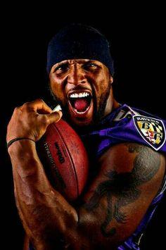 10917d8ff 64 Best Baltimore Ravens images