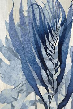 Sea Nature In Blue I by Melonie Miller is printed with premium inks for brilliant color and then hand-stretched over museum quality stretcher bars. Money Back Guarantee AND Free Return Shipping. Botanical Art, Botanical Illustration, Illustration Art, Illustrations, Watercolor Flowers, Watercolor Paintings, Abstract Watercolor Art, Abstract Nature, Blue Painting