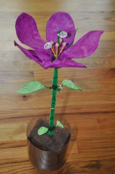 (Here a science project: model of a plant. Science Project Models, Science Models, Science Fair Projects, School Projects, Projects For Kids, Primary Science, Science Classroom, Science Education, Science Activities