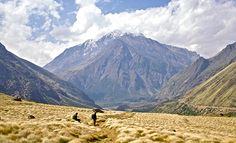 Nanda Devi leads you via high Himalayan ridges the locations are just exquisite to watch trek to wild space reaches to east base camp with an altitude of 13,700 ft. and undoubtedly it is the most unfrequented and scenic trekking routes in the Himalayan region.