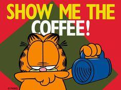show me the coffee