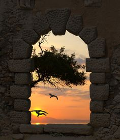 Sunset and seagulls through the old castle by Yiannis Papadimitriou, via Shutterstock Beautiful Sunset, Beautiful World, Beautiful Places, Beautiful Pictures, Amazing Sunsets, Beautiful Morning, Gates, Weather Underground, Window View