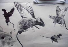 Resultado de imagen de rata con alas