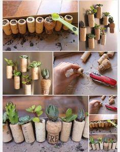 Succulent MicroGardens in Wine Cork, Live succulents in cork, party favor, wedding favor Decoration Plante, Plant Labels, Planting Plan, Cork Art, Wine Cork Crafts, Plant Holders, Crafts For Teens, Planting Succulents, Beautiful Gardens