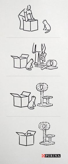 No need to buy new cat toys. Cats and boxes seem to always get along just fine!