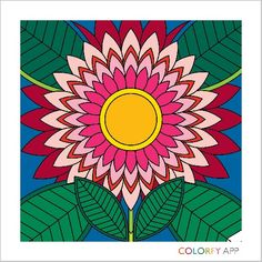 Get this app colorfy