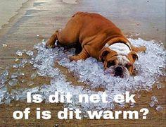 Afrikaans, Warm, Hot, Afrikaans Language