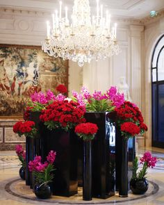 """miumiuceline: """"Flowers are back… Discover the amazing work of our favorite Aristic Director @jeffleatham in @fsparis lobby, an incredible colors contrast! Do you like it? More on our facebook..."""
