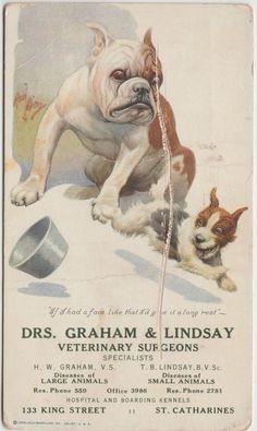 CANADA Advertising Postcard? Dr GRAHAM & LINDSAY Veterinarians Bull Dog Ontario