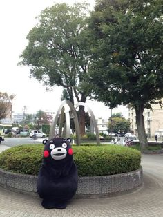 kumamon enjoying a rest