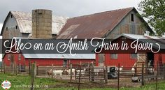 Suzanne Woods Fisher shared about one of her trips to an Amish community in Iowa on Travel Tips.