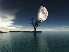 """Bildwerk """"Moonrise"""""""