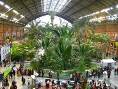 #5 Atocha Station, Madrid, Spain  Mardrid's Atocha Station is the pride of Spain. Connected by high-speed train to Barcelona and Sevilla, The station's main concourse features a lush, covered tropical garden full of palms, ferns and more, giving its visitors the feeling of being in a botanical garden. Not to mention an array of stores, cafés and even a nightclub. Perfect for those who want to party all night & catch an early morning train.