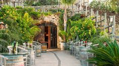 Winery in Newport Beach, California: